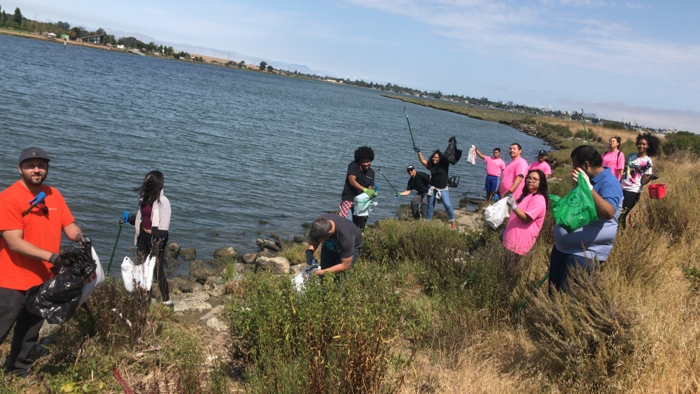 Knighted Ventures - MLK Jr Shoreline Clean-up4